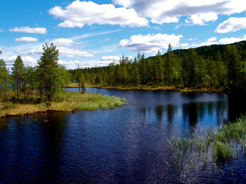 Lake in Kuusamo | by wili_hybrid
