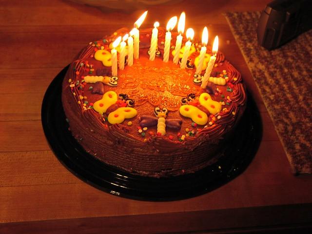 Birthday Cake on Fire Shel E Flickr