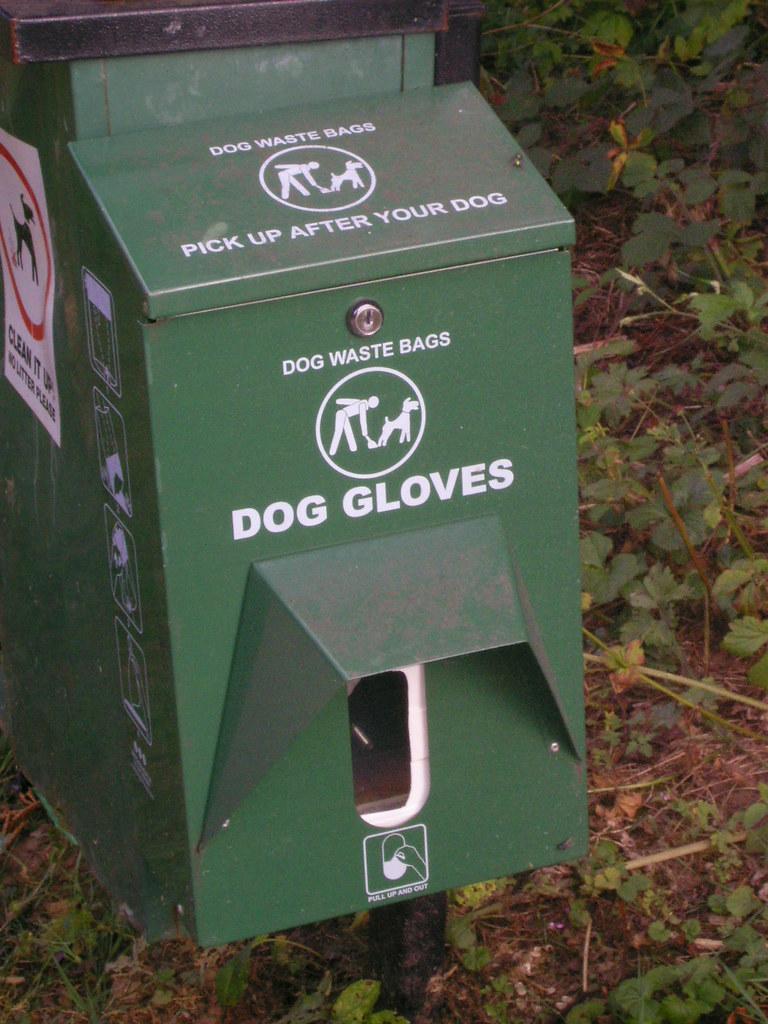 Dog Hats At Petsmart Red Deer