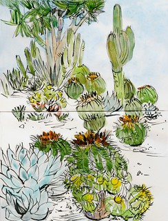 Pasadena sketches: Huntington Gardens | by Laura Frankstone