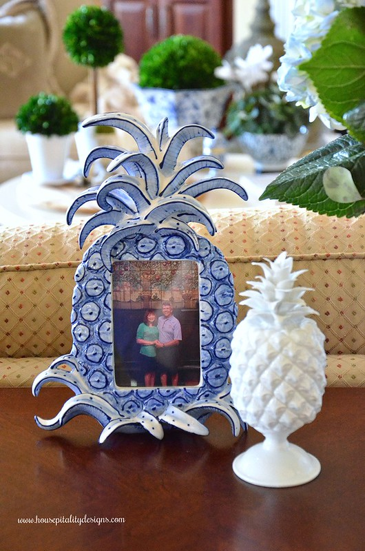 Pineapple Frame-Housepitality Designs
