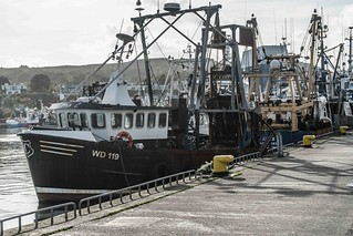 HOWTH FISHING FLEET [OCTOBER 2015]--109440 | by infomatique