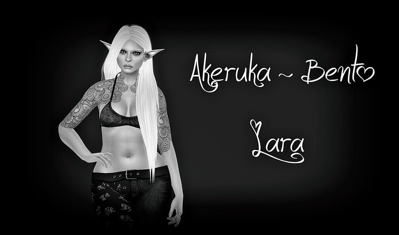 Akeruka Bento Head - Lara
