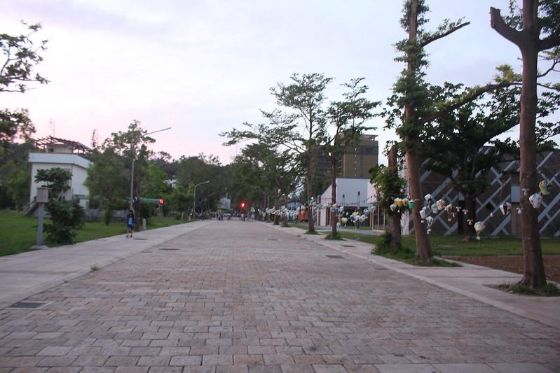初見台東。鐵花村與台東海濱公園-17度C隨拍 (44)