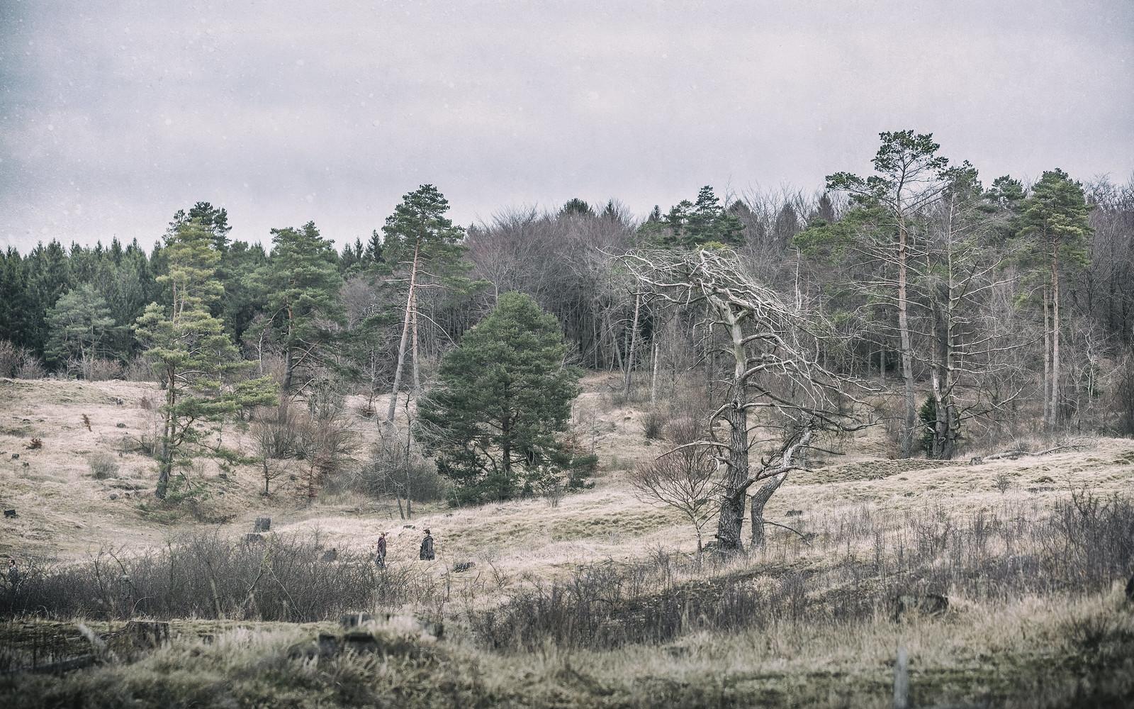 Eifellandschaft zwischen den Jahreszeiten | by glasseyes view