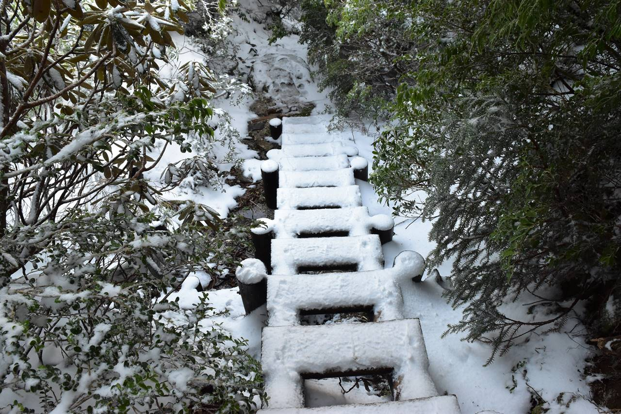宮之浦岳 雪の登山道
