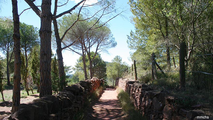 excursión en familia por el Garbí sierra Calderona