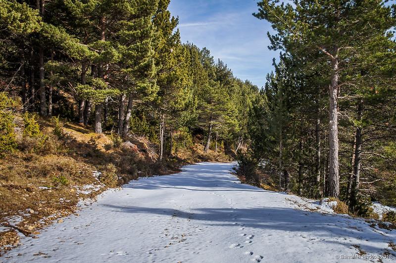 Camino de Fumanya a la Font del Pi