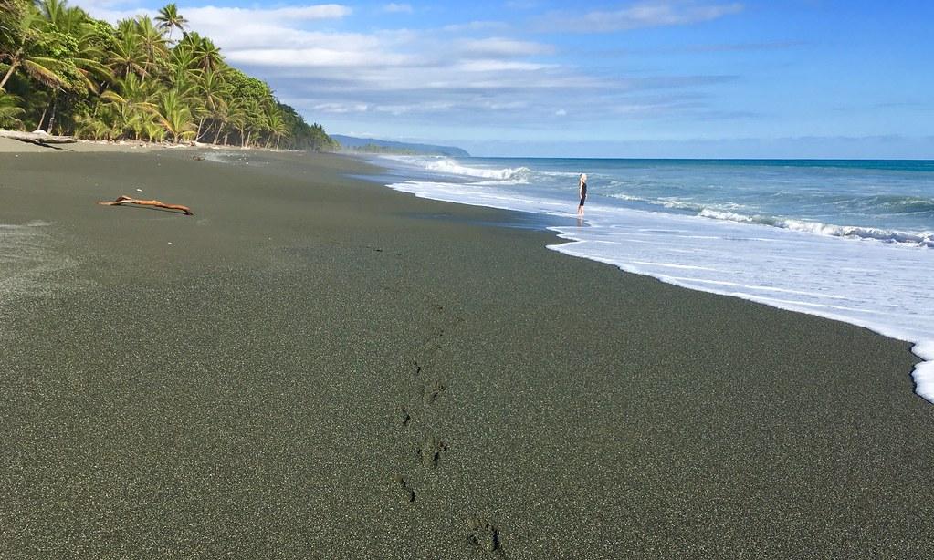 Costa Rica March 2018 Black Sand Beach Of The Osa Peninsu Flickr