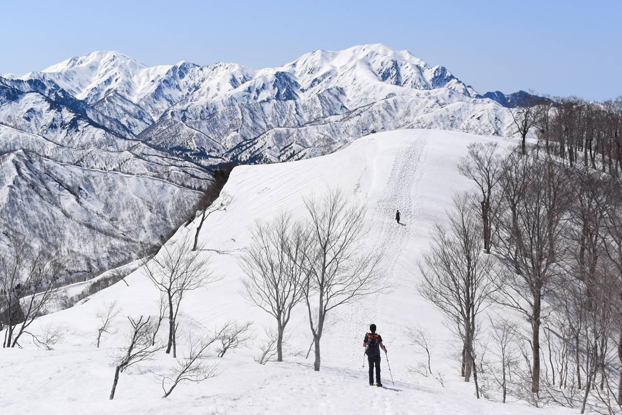 日向倉山 アップダウンの稜線