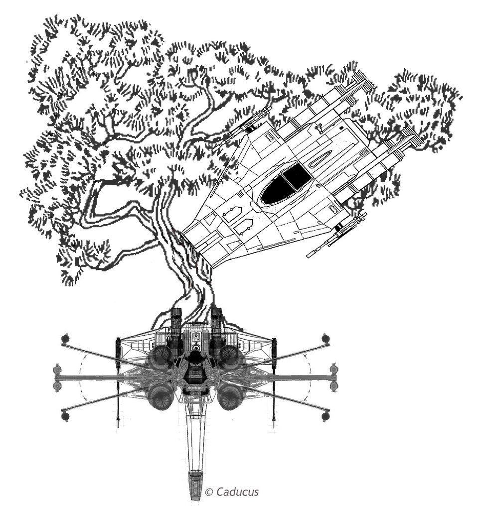 A photoshopped image of the tattoo Ester_Inc describes in her fanfic. At the bottom two X-wing schematics, one viewed from the top and one viewed from in front, are overlapped to form a shape rather like an asterix. This forms the 'root system' for the bonsai tree that grows up from their back engines. The bonsai tree stretches to the left, and from the right an A-Wing schematic is grafted onto its trunk nose-down, and is interwoven with its branches. The whole piece is in black and white.