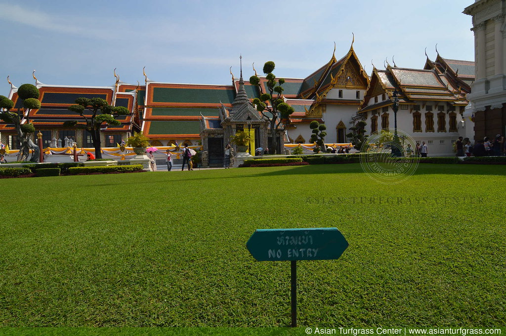 lawn at the Grand Palace in Bangkok