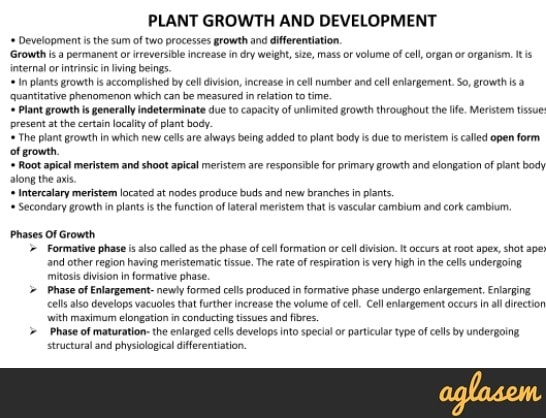 Important Notes of Biology for NEET: Plant Growth and Development