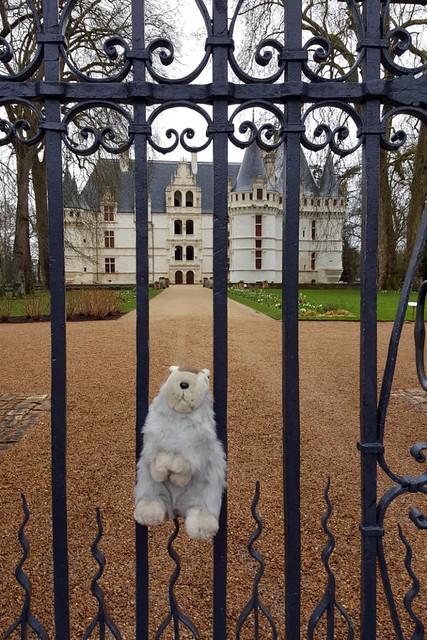 Renaissance-Schloss in Azay-le-Rideau ... Schlösser der Loire ... Karla Kunstwadl muss leider draußen bleiben ... Foto: Margit H.