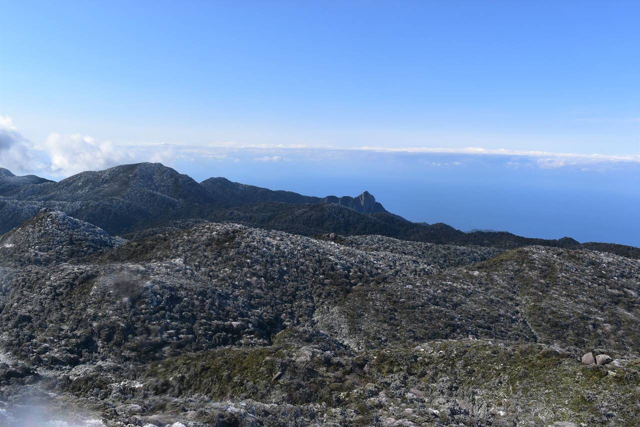 黒味岳山頂からの海の展望