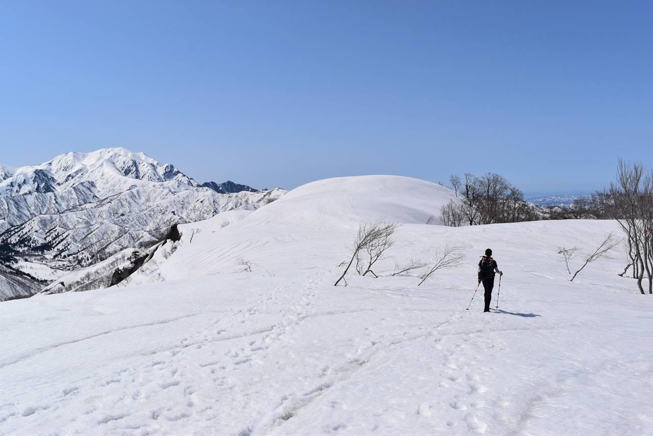 日向倉山 広い雪の登山道