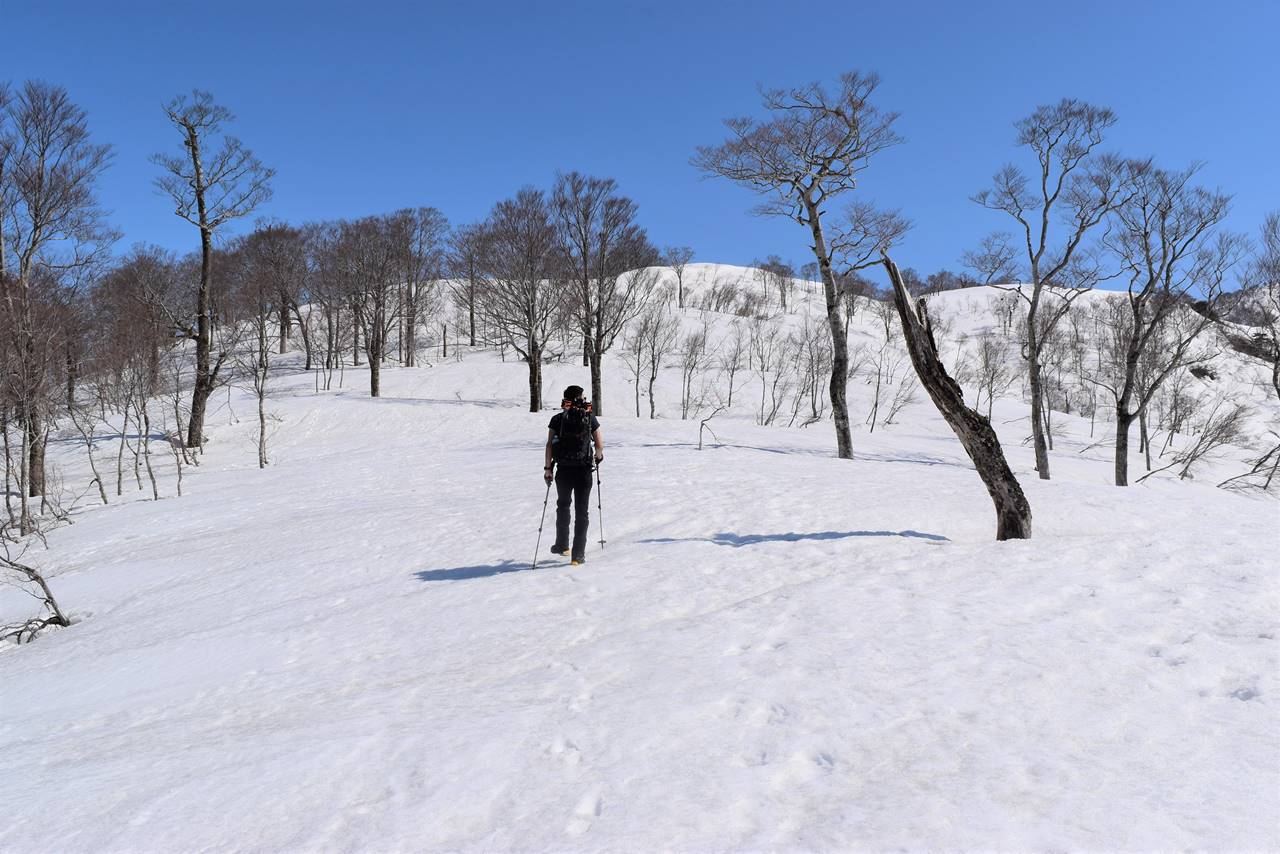 日向倉山 広い雪原