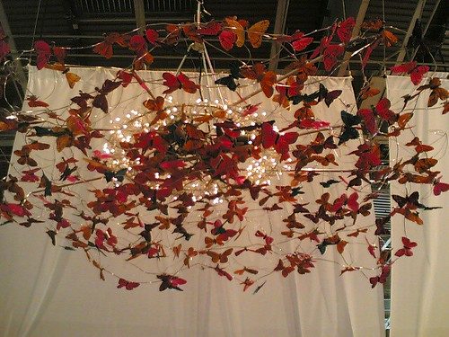 Salon du Livre: Butterfly cloud | by clotilde