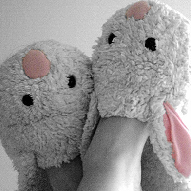 Bunny Slippers | by camera1
