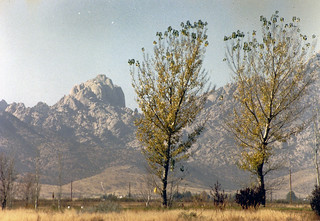 Chiracahua, Arizona 1990 | by PhillipC