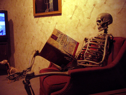 Reading Skeleton | by leted