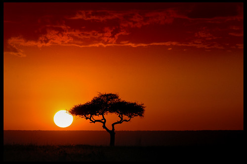 Sunset in Kenya - Masai Mara | by eir@si