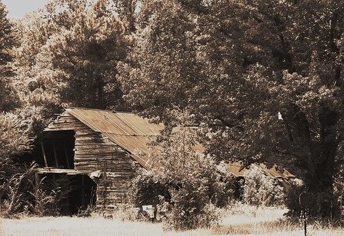 Old barn in Sepia | by BayouBaby