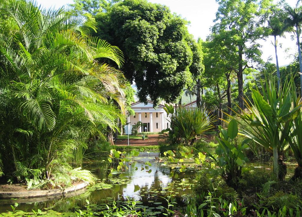 Saint denis 20051217 01 jardin de l 39 etat au fond flickr - Jardin potager bio saint denis ...