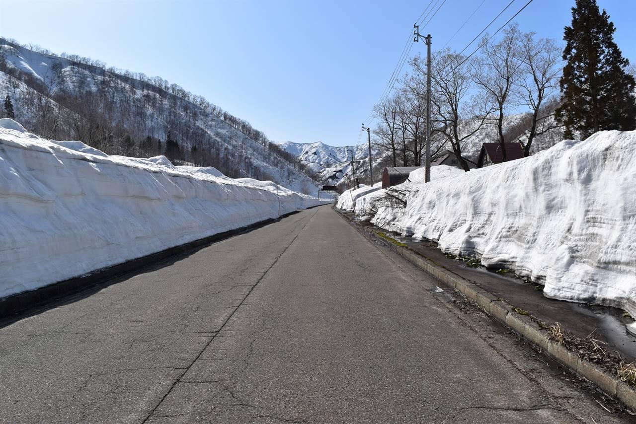 除雪されたシルバーライン