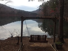 Berry College Reservoir Swing