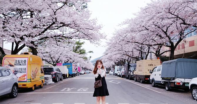 TP.HCM – SEOUL – SKI RESORT