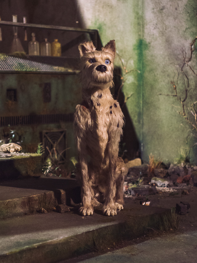 isle of dogs exhibition