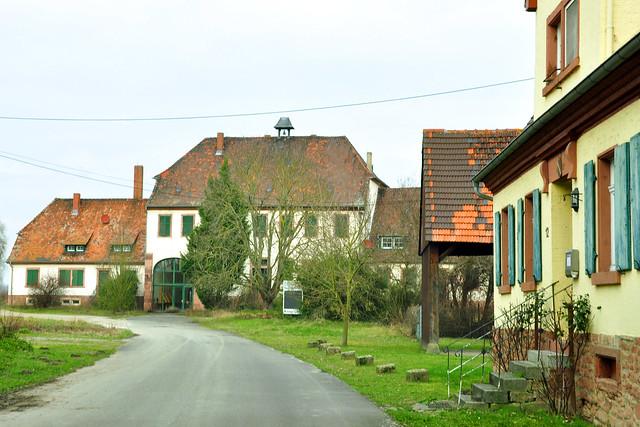 Mannheimer Vororte ... Kirschgartshausen ... Foto: Brigitte Stolle