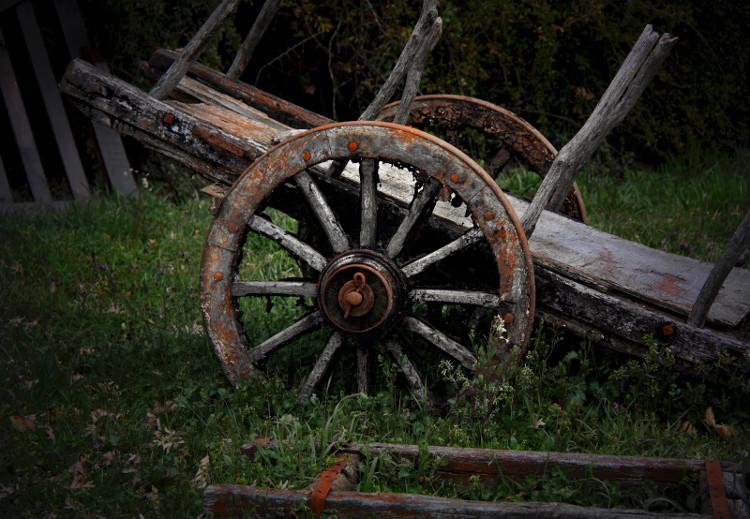 Fotografia em Palavras: Antiguidade