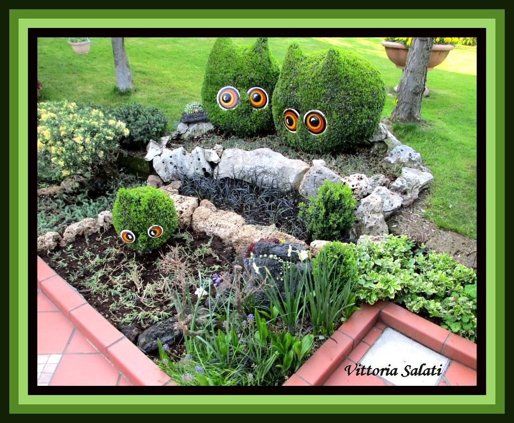 Il mio giardino vittoria salati vittoria salati flickr