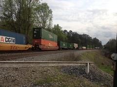 Train in Paulding Forest
