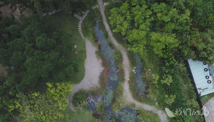 948-2-2_1碎石地底下是雨撲滿,保持生態池水循環,兩旁植披,仿造森林從低到高的層次,讓生物有躲藏空間。