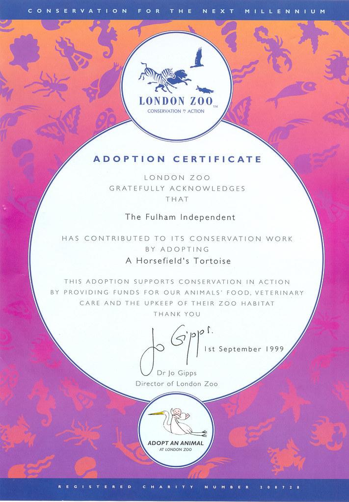 Horsefield Tortoise adoption certificate   In 1999, members