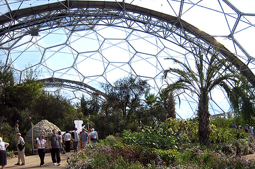 Inside the biome, Eden Project | All about the Eden ...