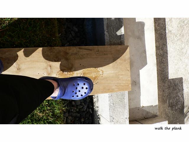Kiwi Blue Shoe Polish India