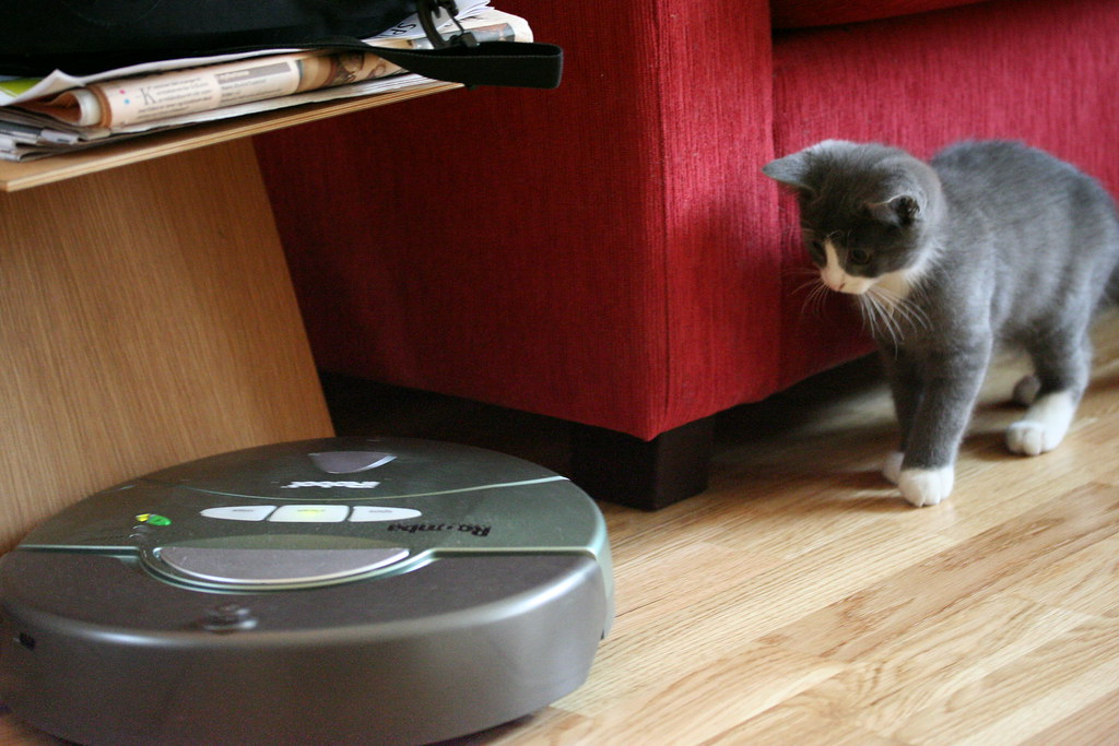 Image result for robot cleaner flickr