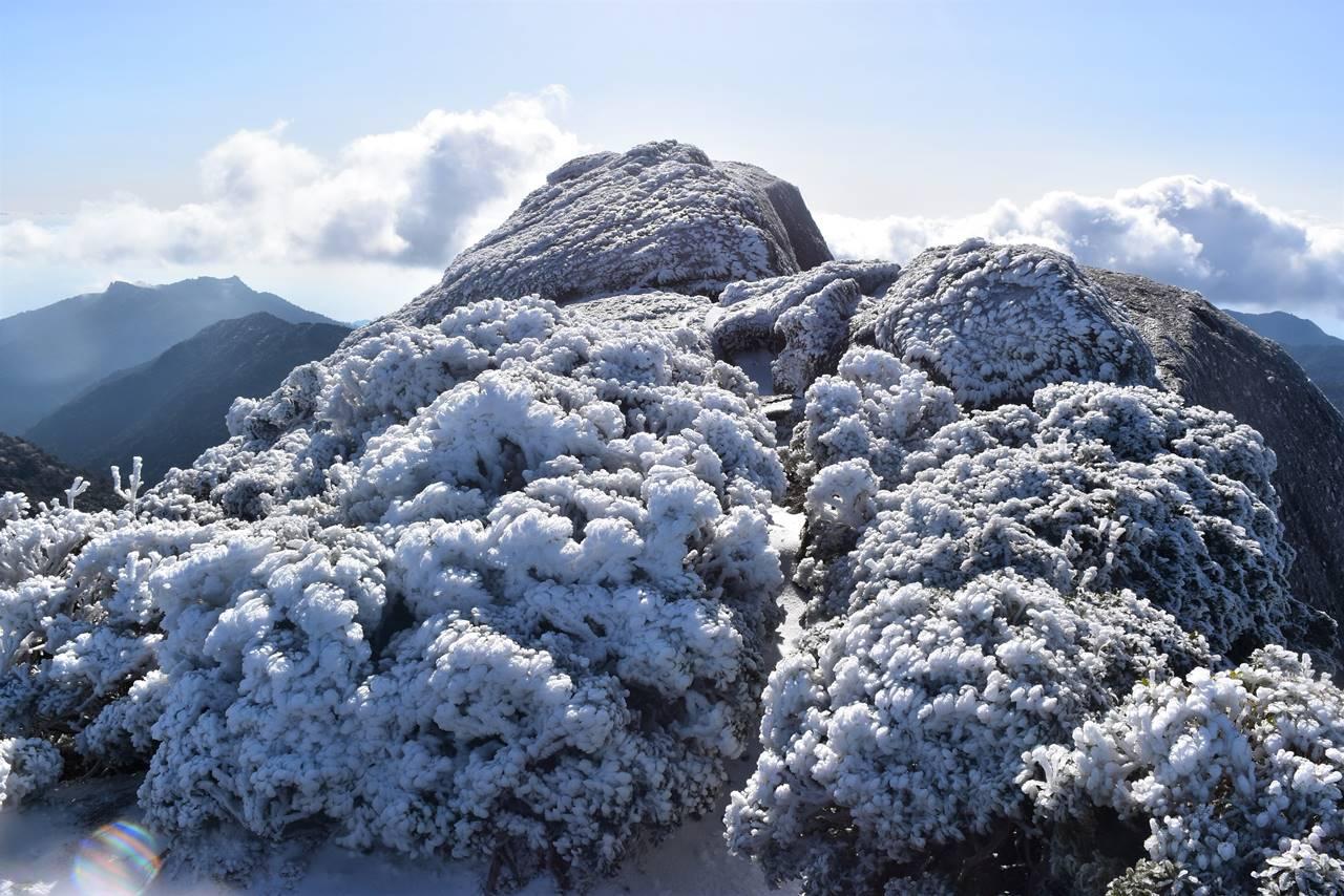 雪の黒味岳山頂