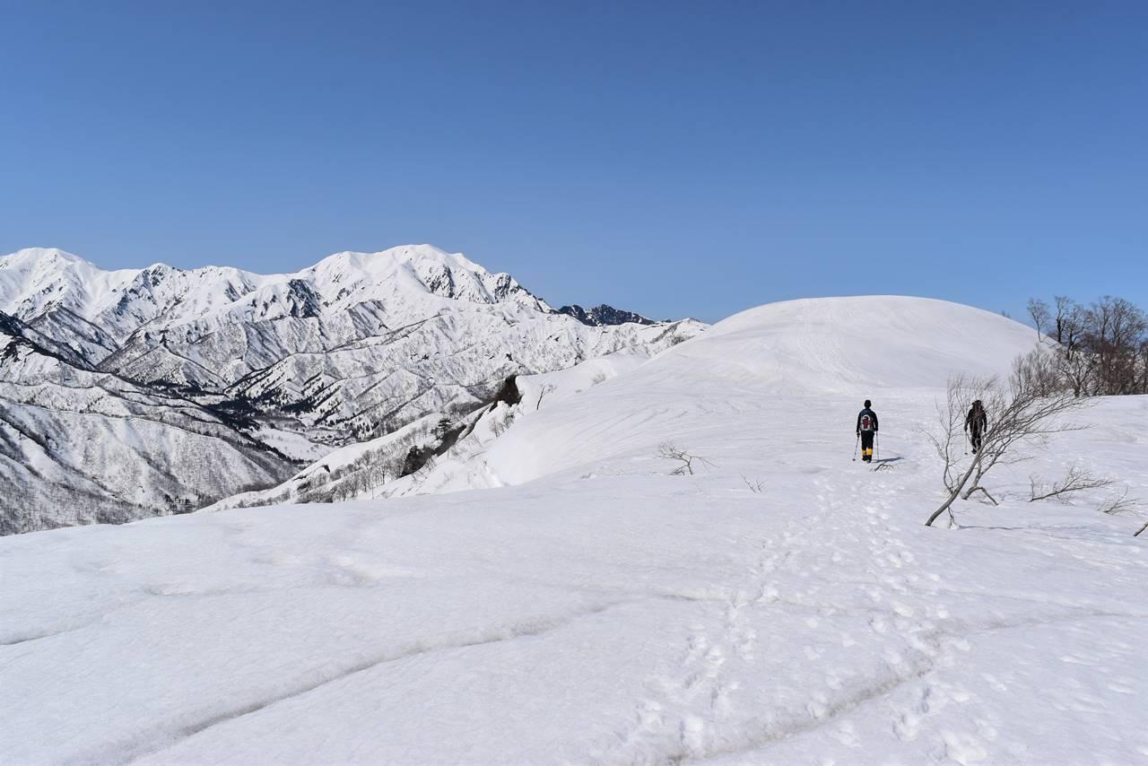 日向倉山の稜線から見る越後駒ヶ岳
