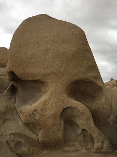 Skull Rock Joshua Tree | by fishfoot