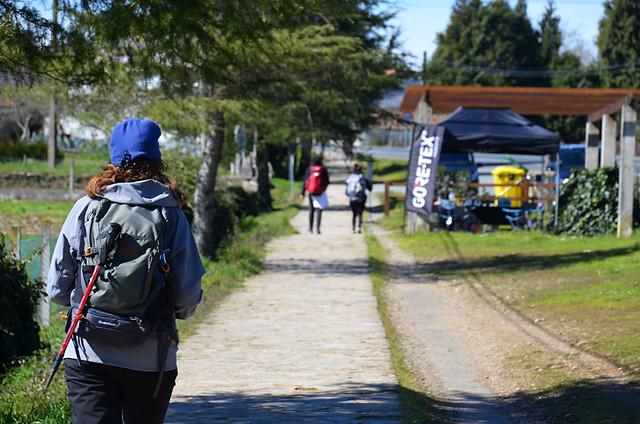 Reaching a checkpoint, Camino de Santiago, Galicia