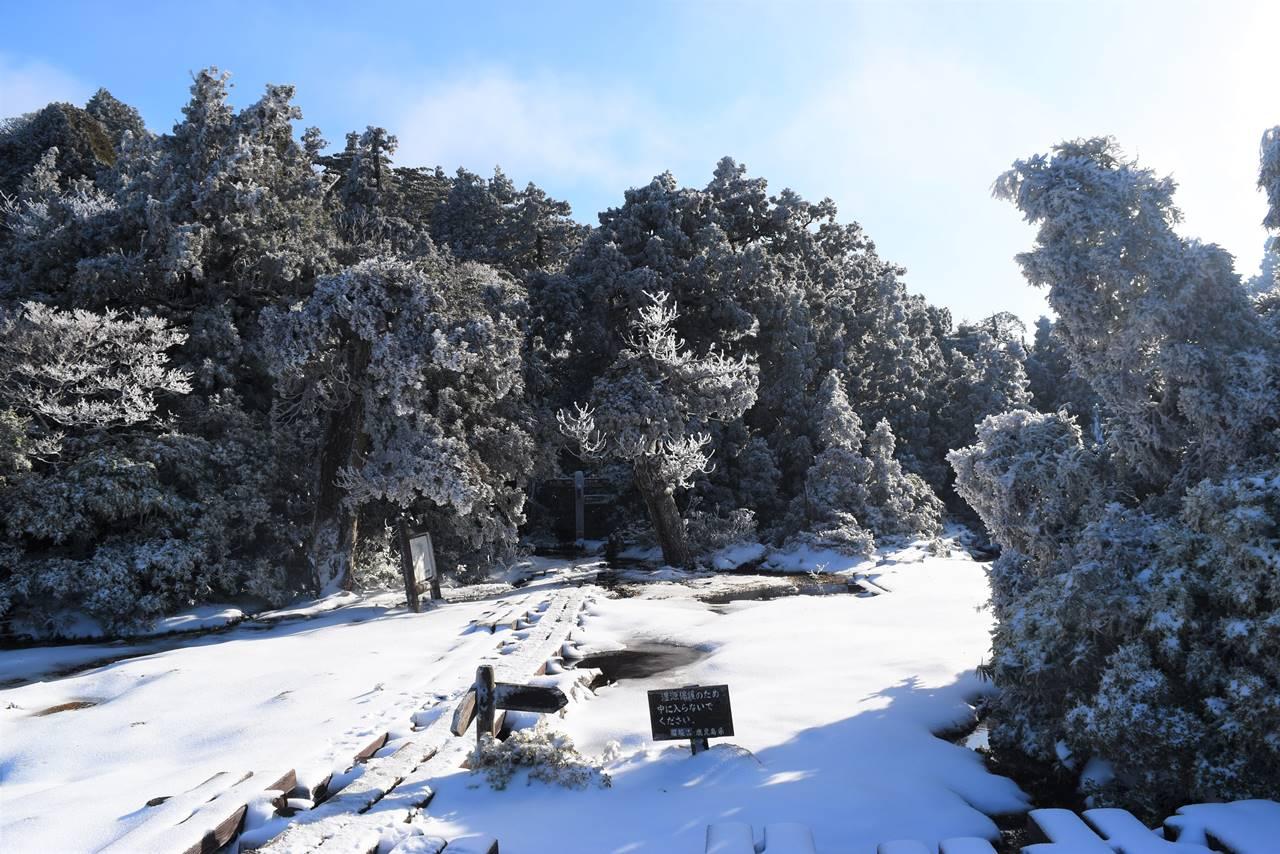 宮之浦岳登山 花之江河の樹氷風景