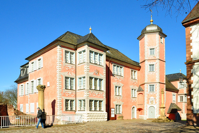 Ladenburg am Neckar ... März 2018 ... Foto: Brigitte Stolle ... Lobdengaumuseum