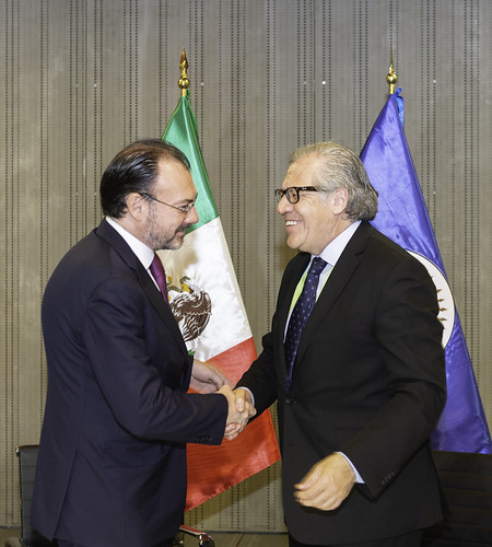 OAS and Mexico Sign Agreement for Mission to July 1 Elections