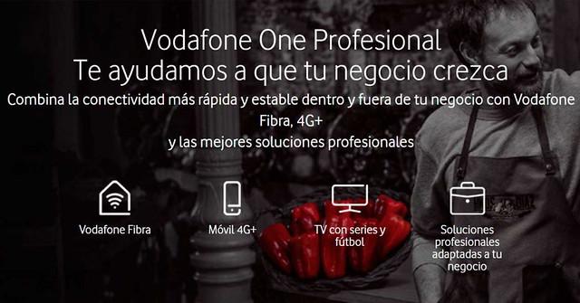vodafone-one-profesional
