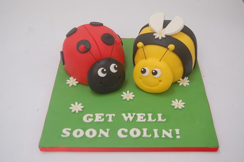 Magnificent Ladybird And Bumble Bee Cake Beautiful Birthday Cakes Personalised Birthday Cards Paralily Jamesorg
